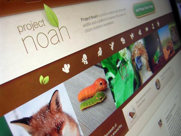 Web de la xarxa Project Noah