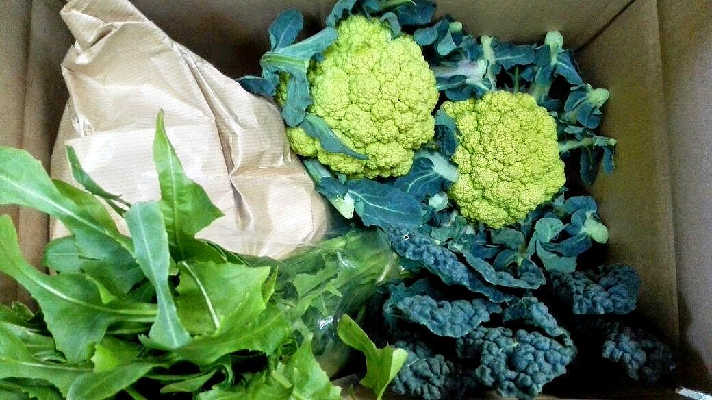 Enviament de verdura i fruita de temporada online